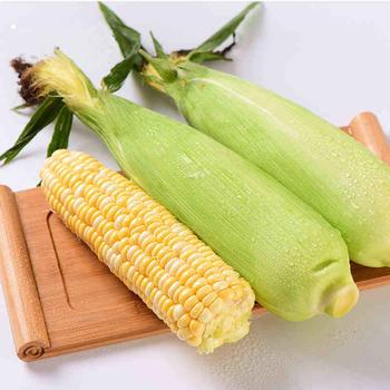 乐知果生云南水果玉米9斤约12-15个可生吃