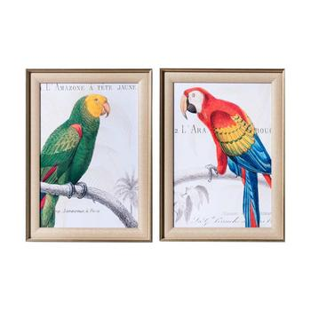 奇居良品 喷砂装饰画 鹦鹉手稿