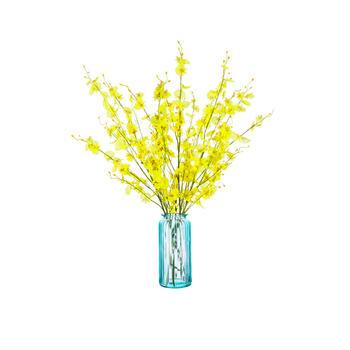 奇居良品 黄色跳舞兰+莫卡花瓶