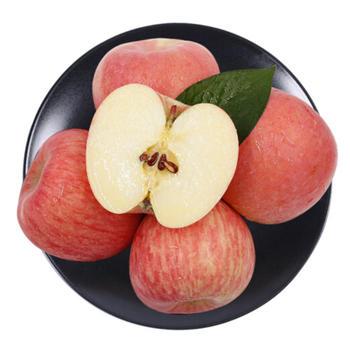 大连产地直销红苹果5斤装包邮