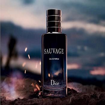 克里斯汀Dior迪奥旷野男士  香水